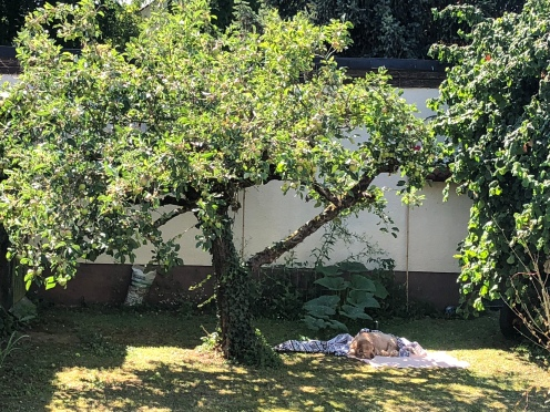 He chose his resting place under our apple tree in Germany...